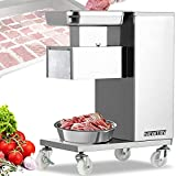 NEWTRY Commercial Meat Cutter Machine for Restaurant, 5mm Meat Cutting Machine, 1,100 lbs/H, Meat Slicer Strips Cubes Minces, QE